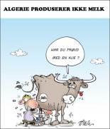 Algerie produserer ikke melk
