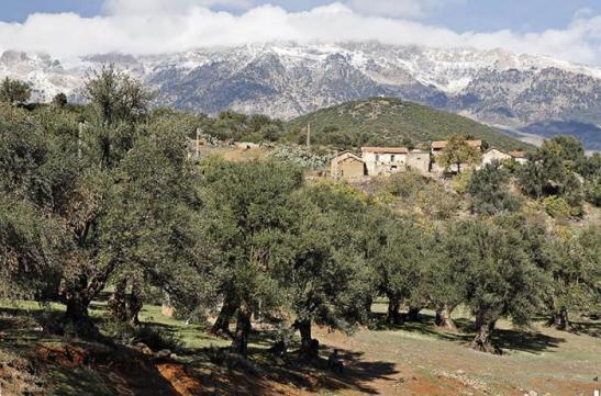 Kabylia landskap