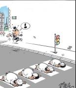 Debatt om islam i frankrike